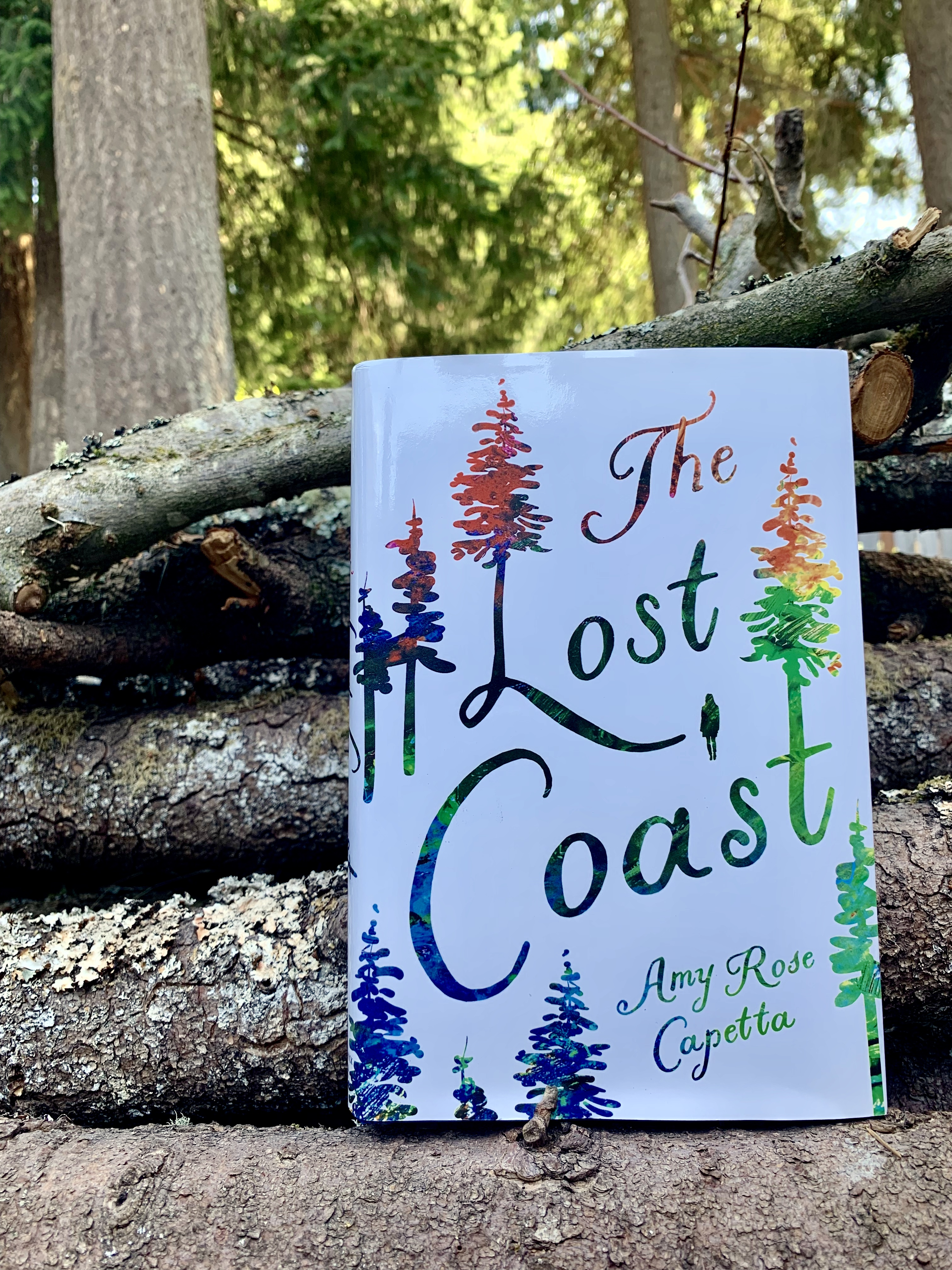 Image result for the lost coast by amy rose capetta